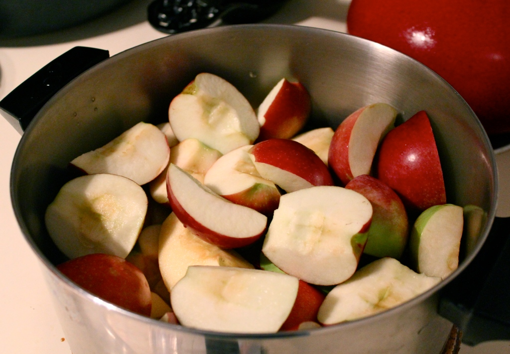 Apples ready to simmer